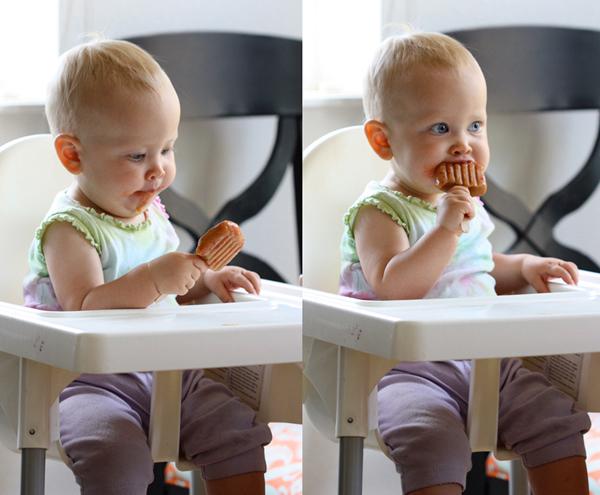 baby-food-pops